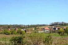 piskavica-ae0268d5.jpg