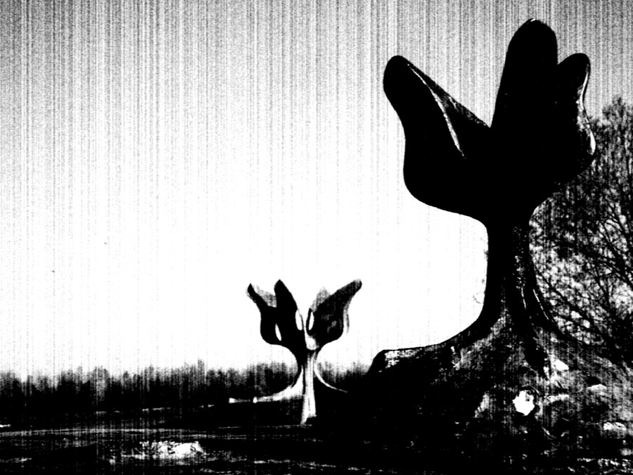 jasenovac.crnapg.jpg